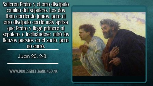 TEXTO, AUDIO Y VIDEO – Evangelio 27 de Diciembre 2016
