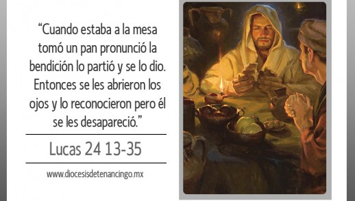 TEXTO, AUDIO y VIDEO – Evangelio 30 de Abril 2017