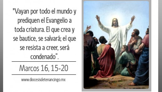 TEXTO, AUDIO y VIDEO – Evangelio 25 de Abril 2017