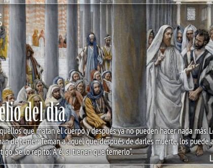 TEXTO, AUDIO y VIDEO – Evangelio 20 de Octubre 2017
