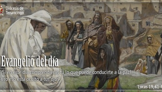 TEXTO, AUDIO Y VIDEO – Evangelio 23 de Noviembre 2017