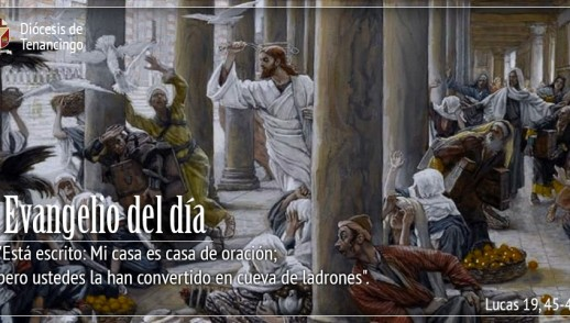 TEXTO, AUDIO Y VIDEO – Evangelio 24 de Noviembre 2017