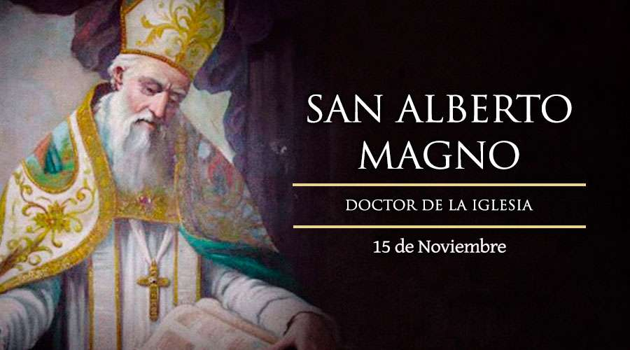 [ TEXTO, AUDIO y VIDEO ] Santo del Día, San Alberto Magno