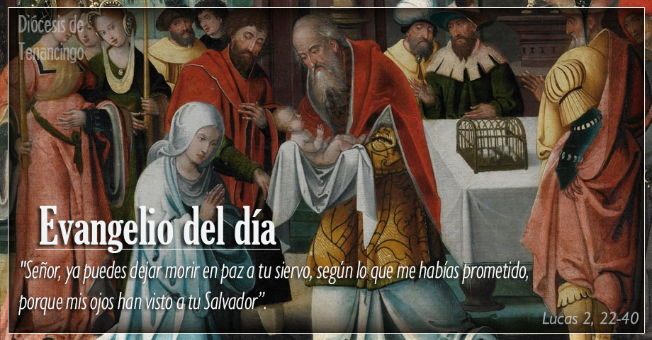 TEXTO, AUDIO Y VIDEO – Evangelio 31 de Diciembre 2017