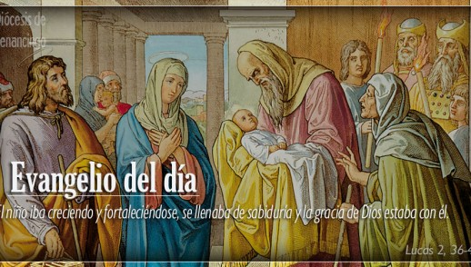 TEXTO, AUDIO Y VIDEO – Evangelio 30 de Diciembre 2017