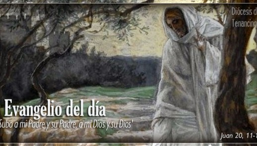 TEXTO, AUDIO Y VIDEO – Evangelio 03 de Abril 2018